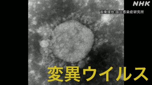 日本型コロナ変異の東京五輪株が誕生!感染力は?ワクチン効果は?